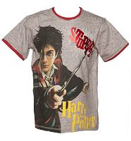 Kids Grey Marl Harry Potter T-Shirt from Fabric Flavours