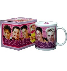 Take That: Worlds Number 1 Boy Band Mug [View details]